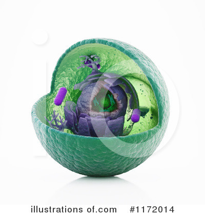 Royalty-Free (RF) Biology Clipart Illustration by Mopic - Stock Sample #1172014