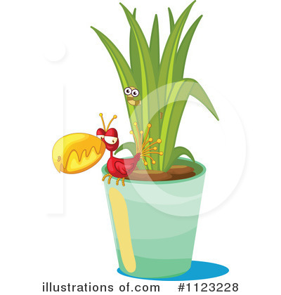 Bird Of Paradise Clipart #1123228 by Graphics RF