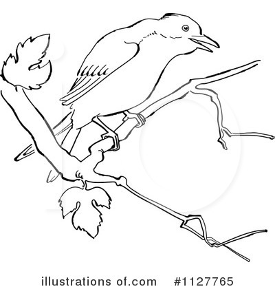 Royalty free rf bird clipart illustration by picsburg stock sle