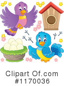 Bird Clipart #1170036 by visekart