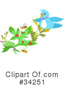Royalty-Free (RF) Bird Clipart Illustration #34251