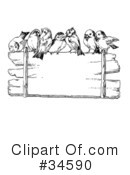 Royalty-Free (RF) Bird Clipart Illustration #34590