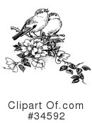 Bird Clipart #34592 by C Charley-Franzwa