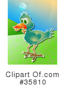 Royalty-Free (RF) Bird Clipart Illustration #35810