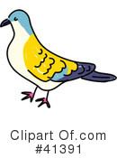 Royalty-Free (RF) Bird Clipart Illustration #41391