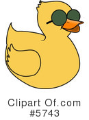 Bird Clipart #5743 by djart
