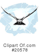 Royalty-Free (RF) Birds Clipart Illustration #20578