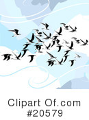 Royalty-Free (RF) Birds Clipart Illustration #20579