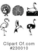 Royalty-Free (RF) Birds Clipart Illustration #230010