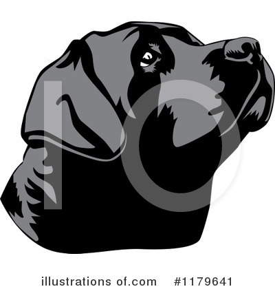 Labrador Clipart #1179641 by David Rey