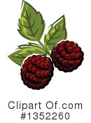 Blackberry Clipart #1352260 by Vector Tradition SM