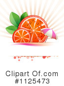 Blood Orange Clipart #1125473 by merlinul
