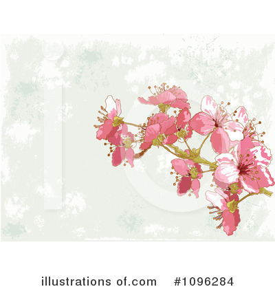 Cherry Blossoms Clipart #1096284 by Pushkin