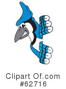 Blue Jay Mascot Clipart #62716 by Toons4Biz