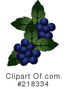 Royalty-Free (RF) Blueberries Clipart Illustration #218334