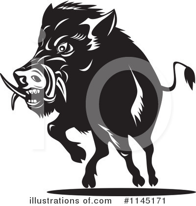 Boar Clipart #1145171 by patrimonio
