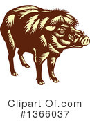 Boar Clipart #1366037 by patrimonio