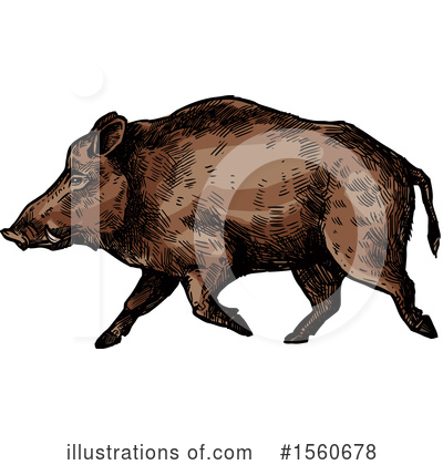 Boar Clipart #1560678 by Vector Tradition SM