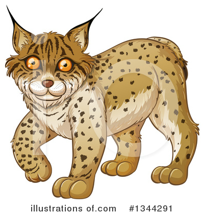 Bobcat Clipart #1344291 by Graphics RF