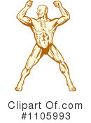 Bodybuilder Clipart #1105993 by patrimonio