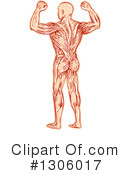 Bodybuilder Clipart #1306017 by patrimonio