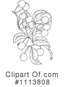 Royalty-Free (RF) Botanical Clipart Illustration #1113808