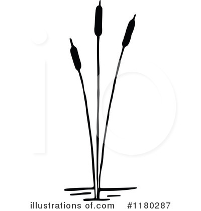 Cattail Clipart #1180287 by Prawny Vintage