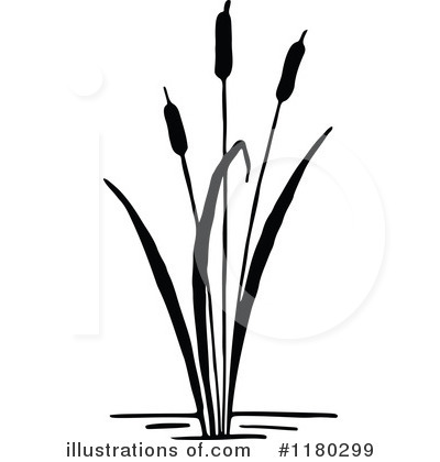 Cattail Clipart #1180299 by Prawny Vintage