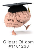 Brain Clipart #1161238 by Julos