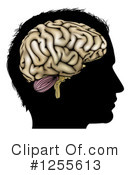 Brain Clipart #1255613 by AtStockIllustration