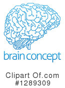Brain Clipart #1289309 by AtStockIllustration