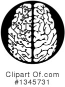 Royalty-Free (RF) Brain Clipart Illustration #1345731