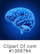 Brain Clipart #1358784 by KJ Pargeter