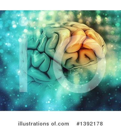 Brain Clipart #1392178 by KJ Pargeter