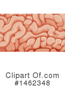 Brain Clipart #1462348 by Graphics RF