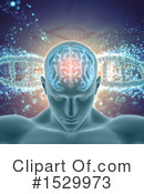 Brain Clipart #1529973 by KJ Pargeter