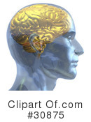 Royalty-Free (RF) Brain Clipart Illustration #30875