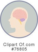 Brain Clipart #76805 by Rosie Piter