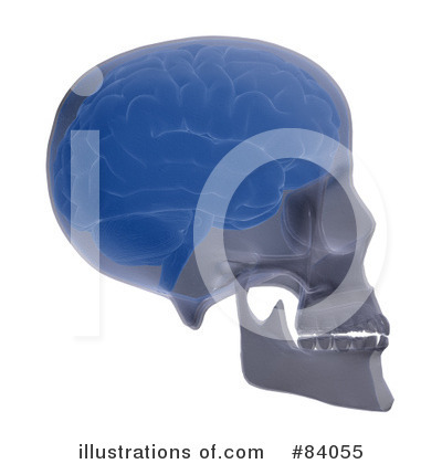Brain Clipart #84055 by Mopic