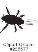 Bugs Clipart #225577