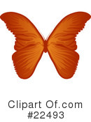 Royalty-Free (RF) Butterflies Clipart Illustration #22493