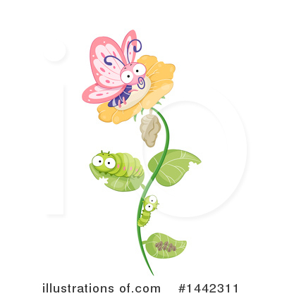 Butterfly Clipart #1442311 by BNP Design Studio