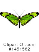 Royalty-Free (RF) Butterfly Clipart Illustration #1451562