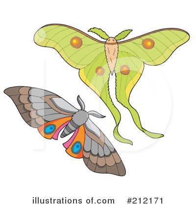 Moths Clipart #212171 by visekart