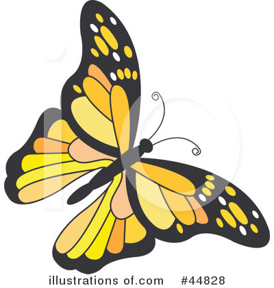 Butterfly Clipart #44828 by Lal Perera