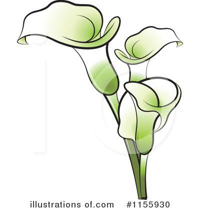 Calla Lily Clip Art Calla clipart illustration
