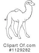 Camel Clipart #1129282 by Picsburg