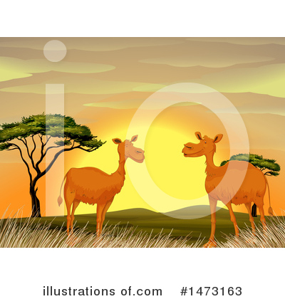 Camel Clipart #1473163 by Graphics RF