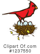 Royalty-Free (RF) Cardinal Clipart Illustration #1237550