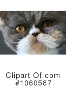 Cat Clipart #1060587 by Kenny G Adams